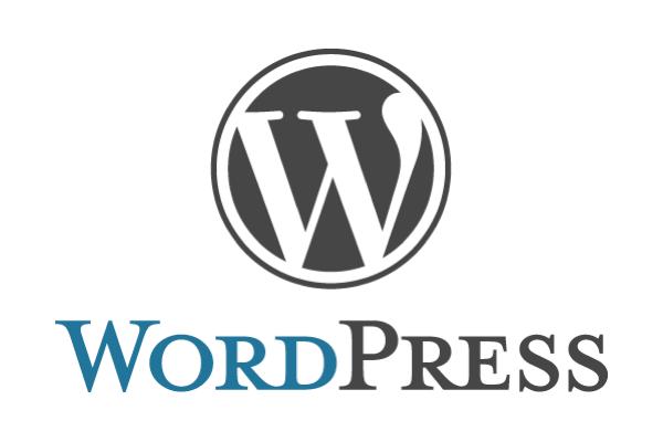 僕がWordPress向け有料テーマ「COLORS」を導入した3つの理由