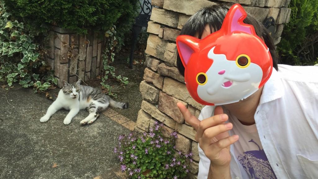 ジバニャンとネコ