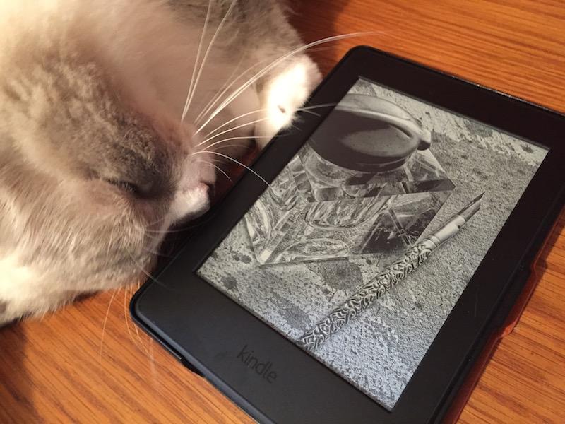 Kindle Paperwhiteを見開き表示・横画面モードで利用する
