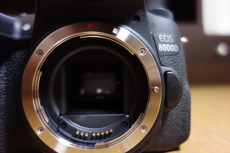 【レビュー】Canon「EOS 8000D」ダブルズームキット買いました!【作例写真あり】