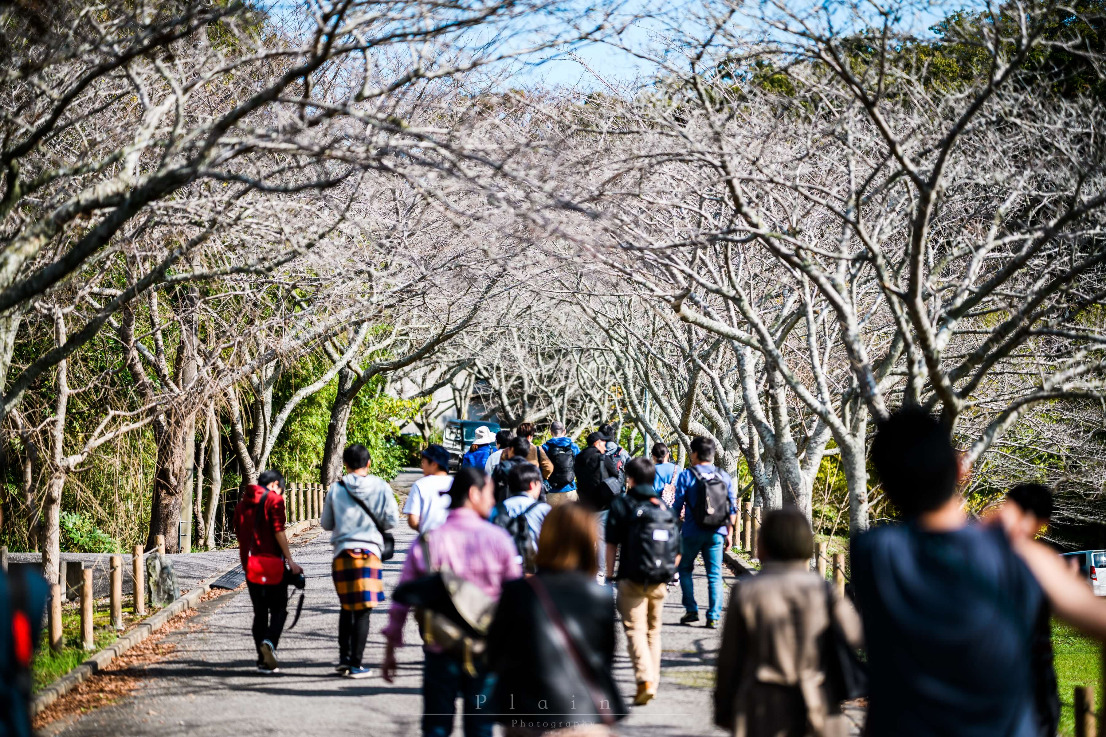千葉県 一宮町で写真友達いっぱい作ってきた #いちのみやフォトウォーク