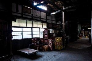 【作例写真】RICOH GR2 実写レビュー!APS-Cコンデジのコスパ最強モデル!!